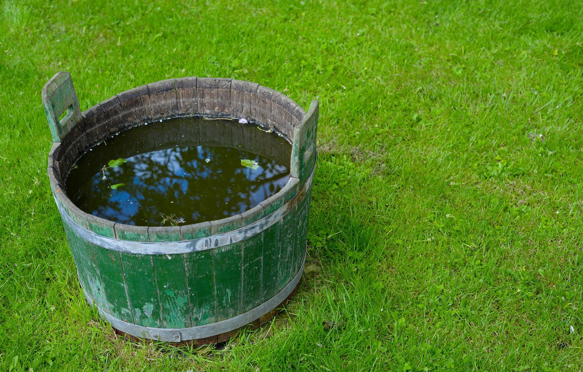 bucket-3395702_1920
